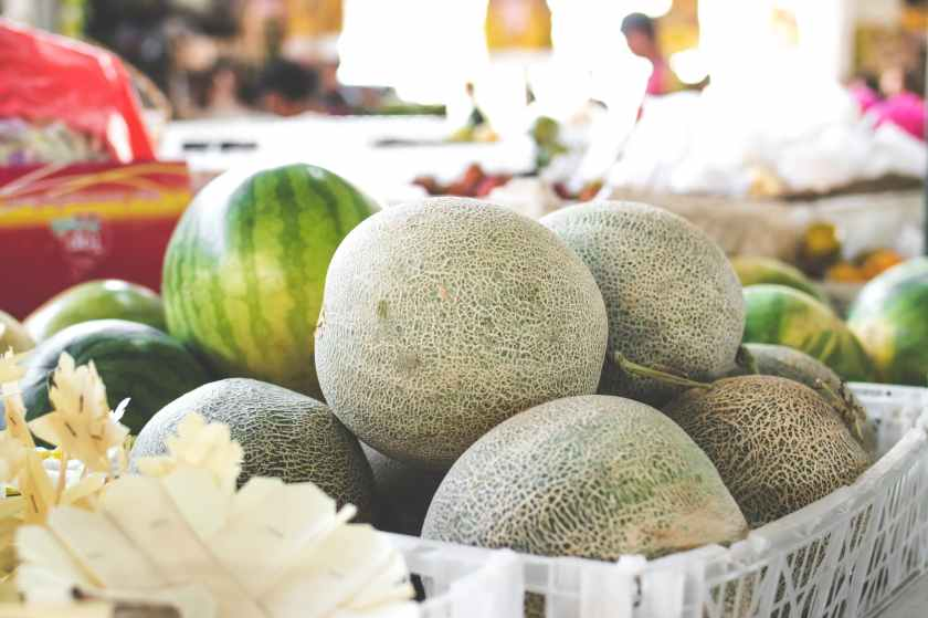 photo of melons on white plastic basket
